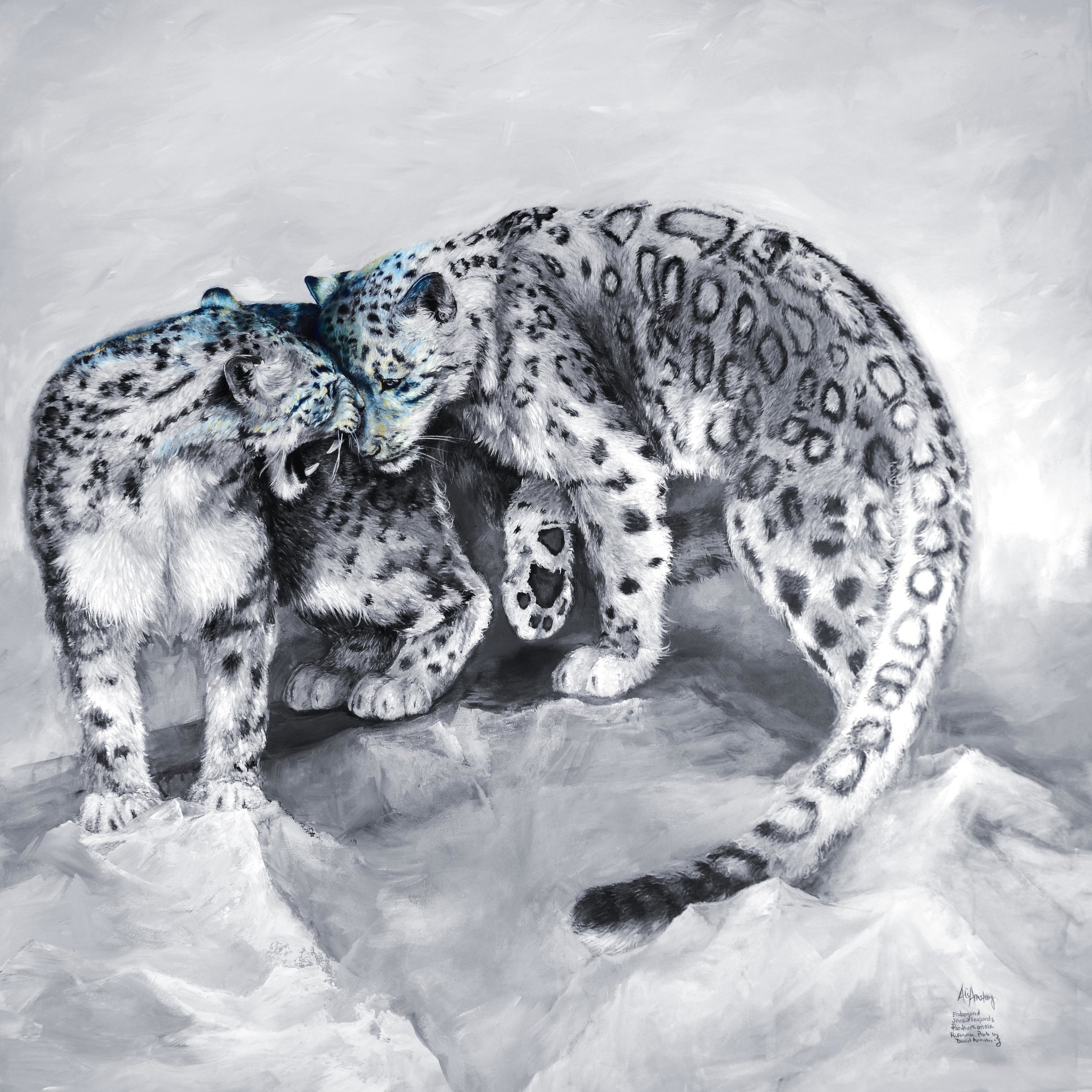 SnowLeopards-Ali ArmstrongScarcel.jpg