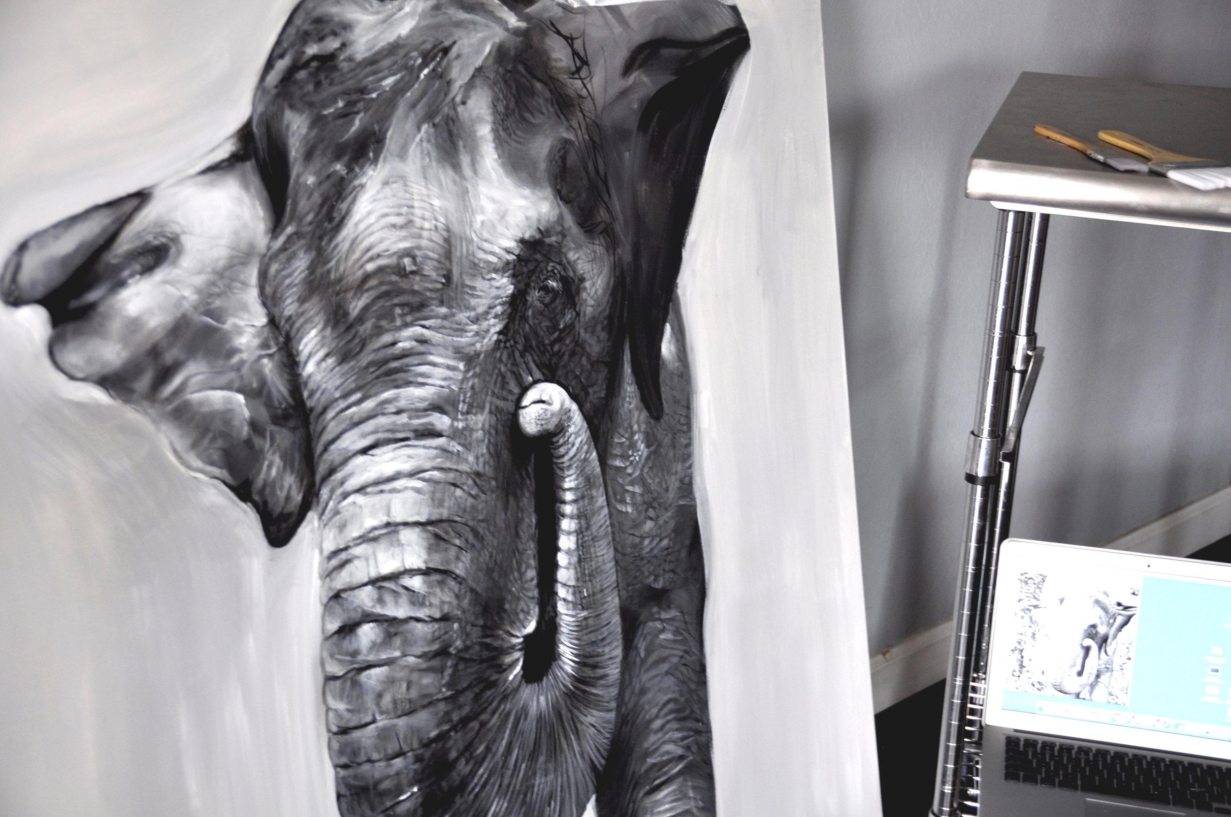 asian elephant progress pic1.JPG