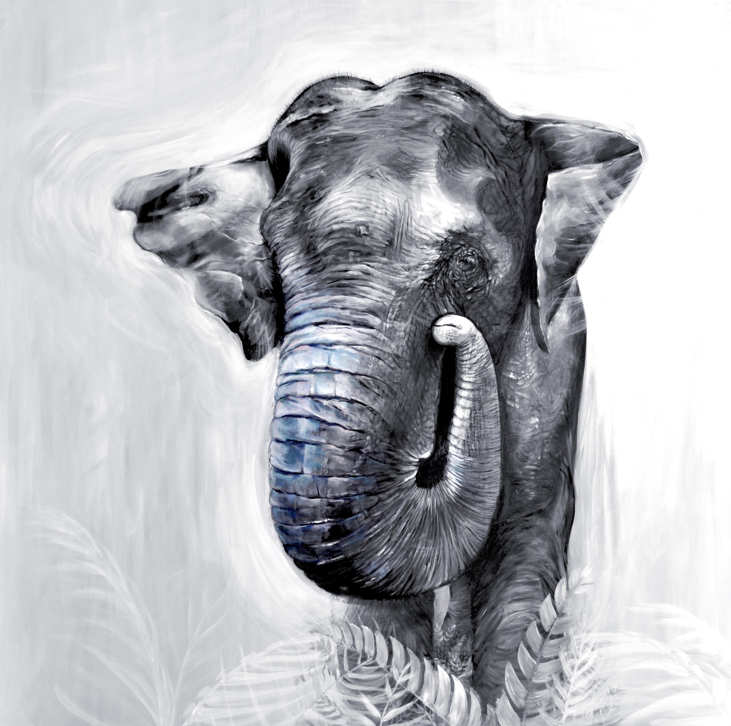 asianelephant_Aliarmstrong.JPG