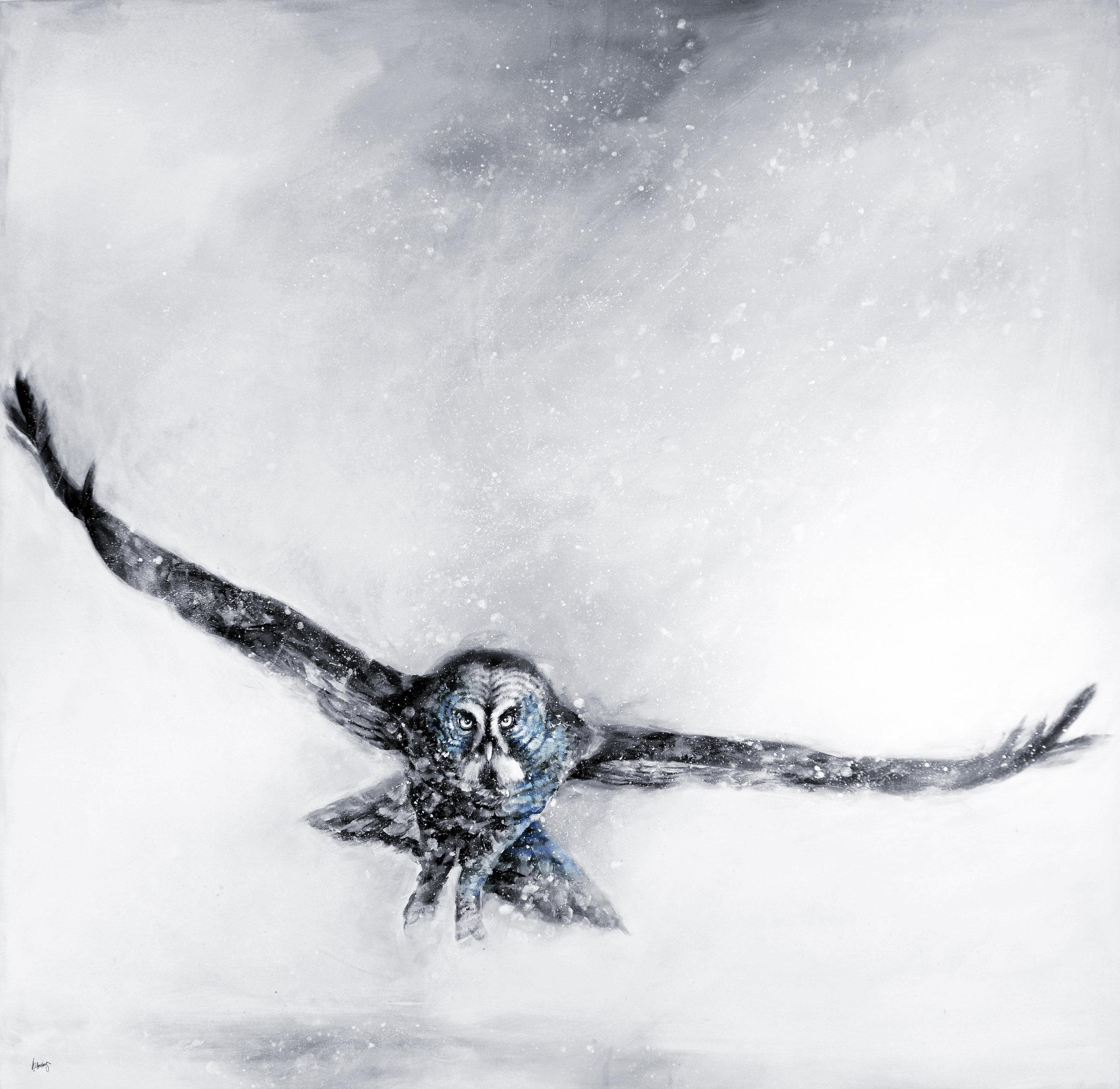 Owl-30012_17.jpg