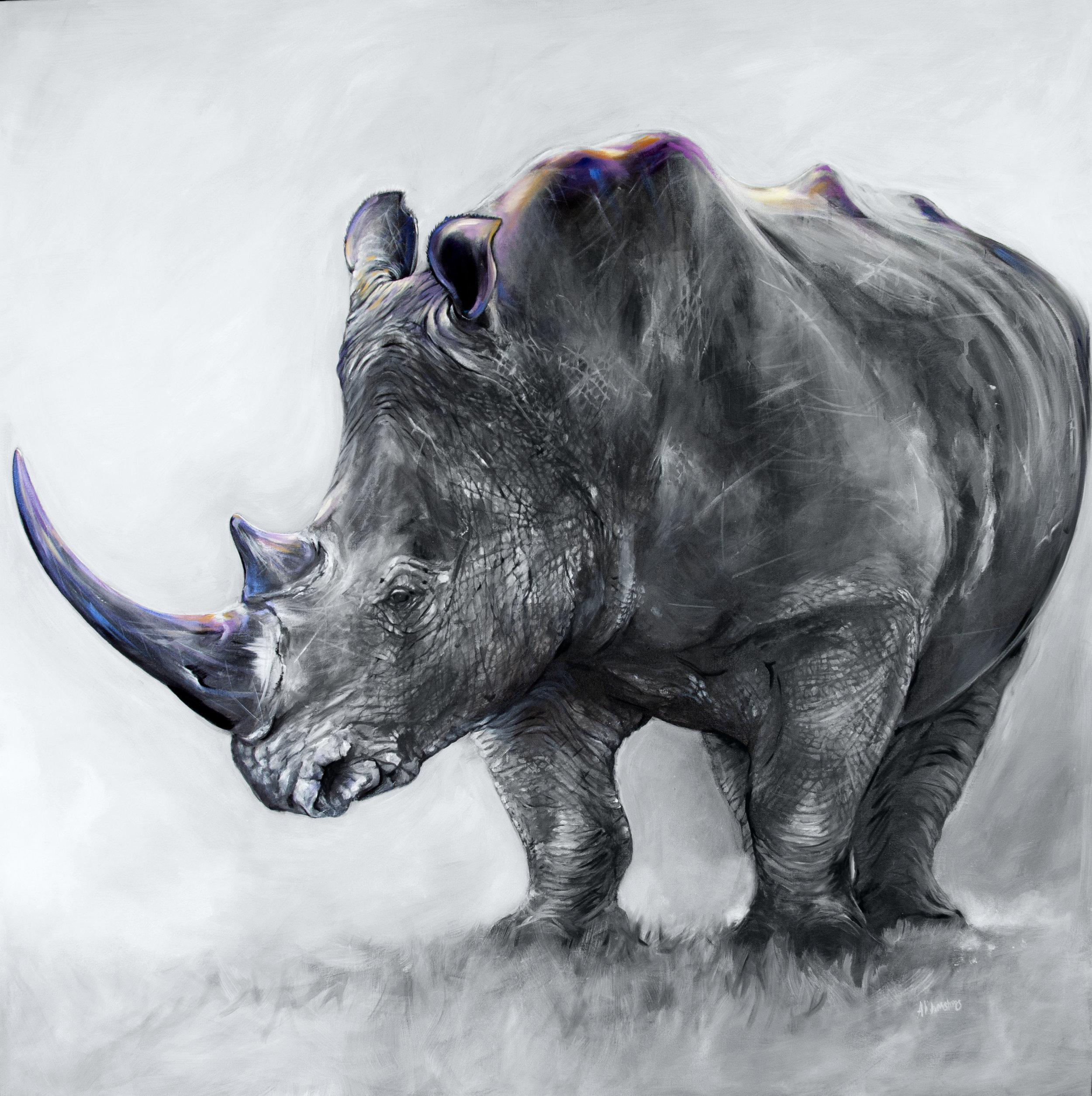 Black Rhino - Oil over Acrylic | 48x48