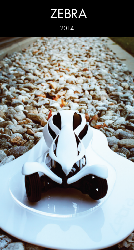 A innovative RC car that is driven by one strong spherical wheel in the rear,  inspired   by zebra