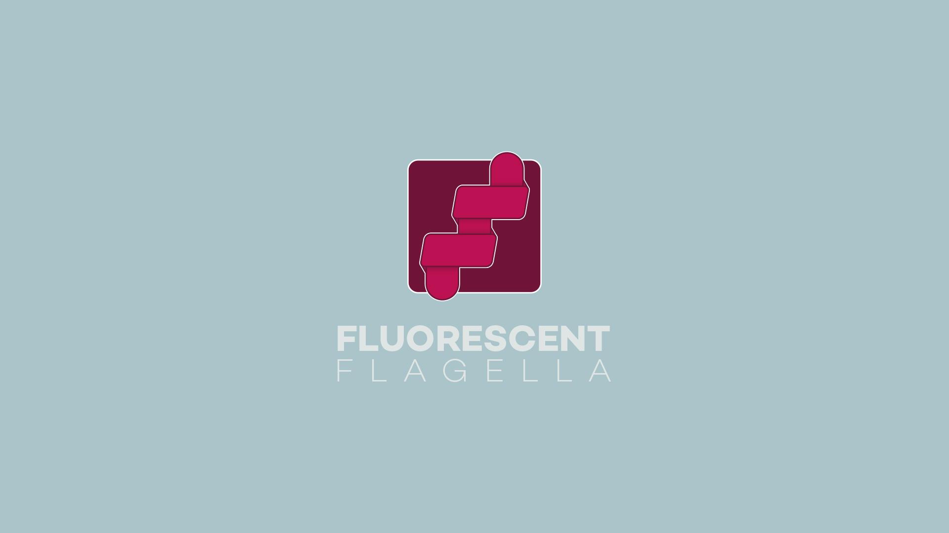 FluorescentFlagellaMockup2.jpg