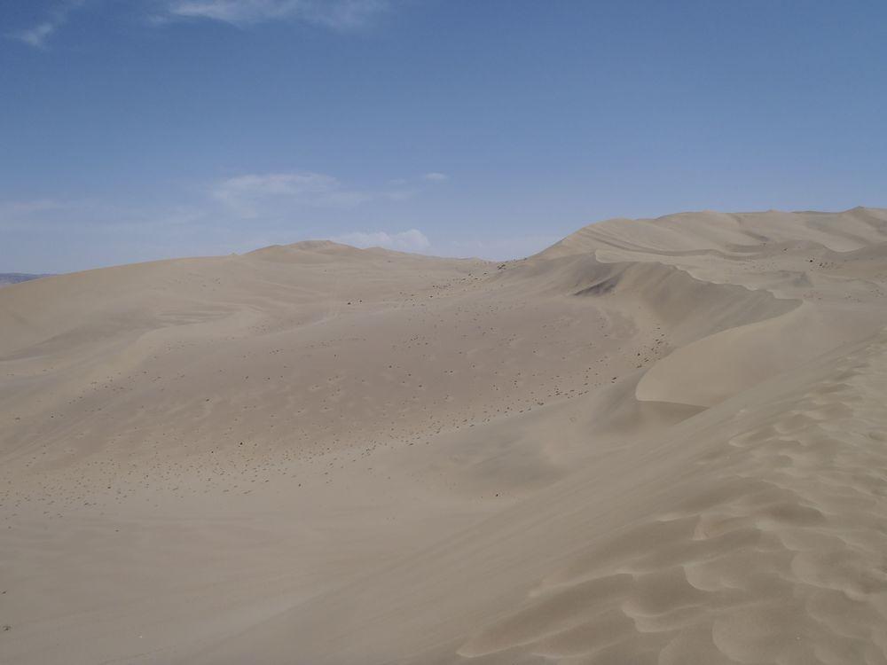 gobi toby desert.jpg