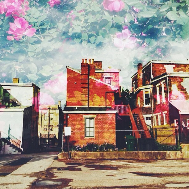 lucy in the sky  (#vsco #vscocam #pstouch #instamood #latergram #urban #decay #collage #design)