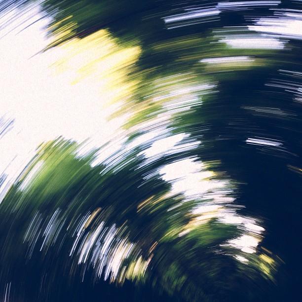 ✨✨#spin the #sky (#vsco #vscocam #instamood #latergram #nature #green )