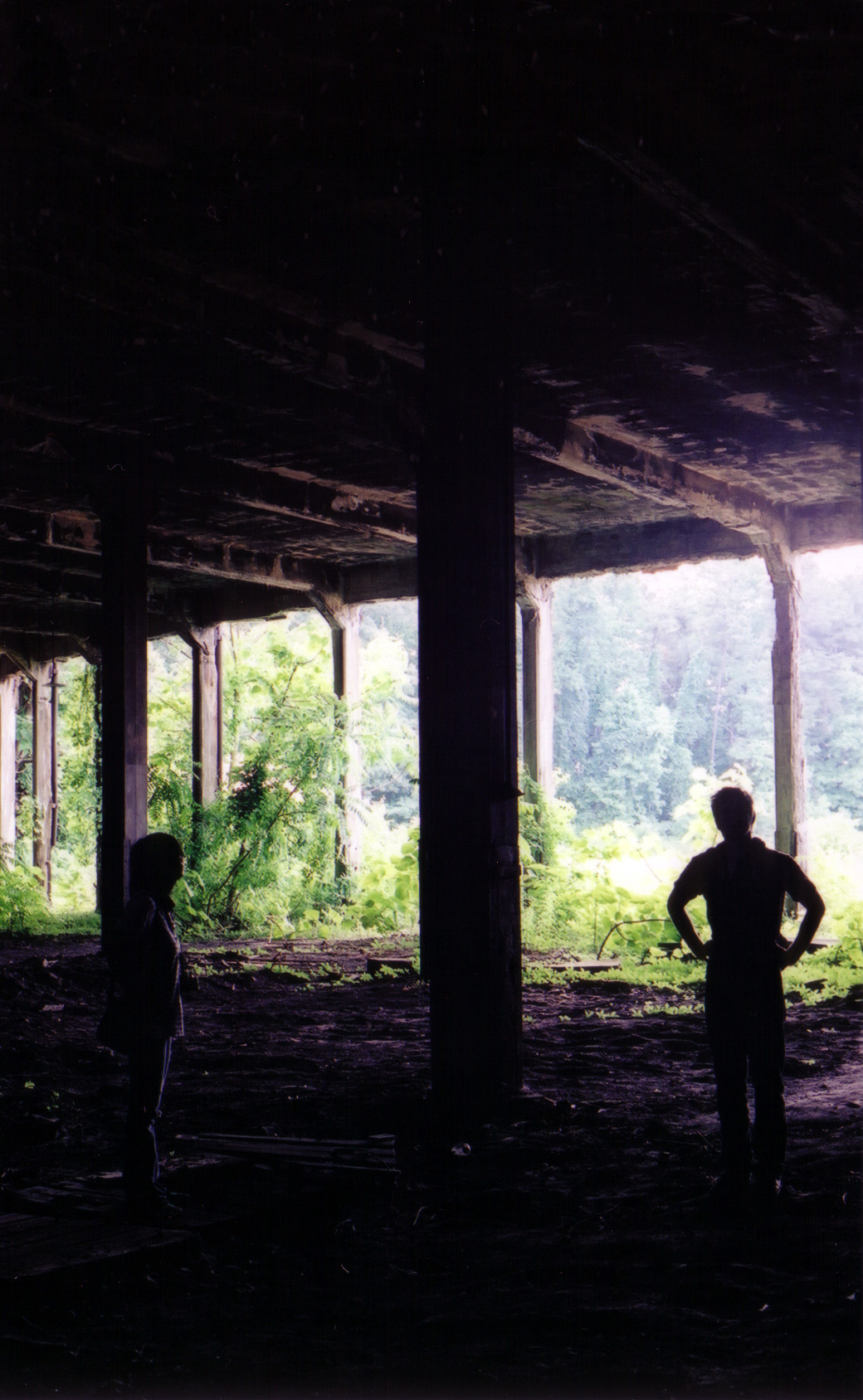 rothrock-silhouette-1.jpg
