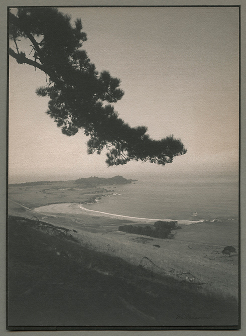 Carmel Point,   ca. 1905. Vintage Platinum print, printed ca. 1905. Signed in ink on image. Image measures 9 11/16 x 6 1/4 inches. Inventory #C0813.  Terms  |  Inquire
