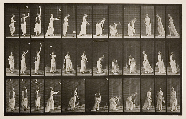 Reaching up, stooping and turning around.   Plate 464, from Animal Locomotion, ca. 1887. Vintage Collotype, printed 1887. Image measures8 3/4 x 13 3/4 inches. Inventory #MU015.  Terms  |  Inquire