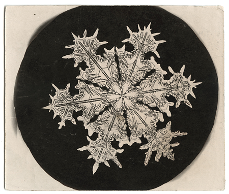 Snowflake crystal photomicrograph,   ca. 1903-1910. Vintage Gelatin Silver Print, printed ca. 1903-1910. Image measures 3 1/2x 2 3/4 inches. Inventory #C1220.  SOLD   Terms  |  Inquire