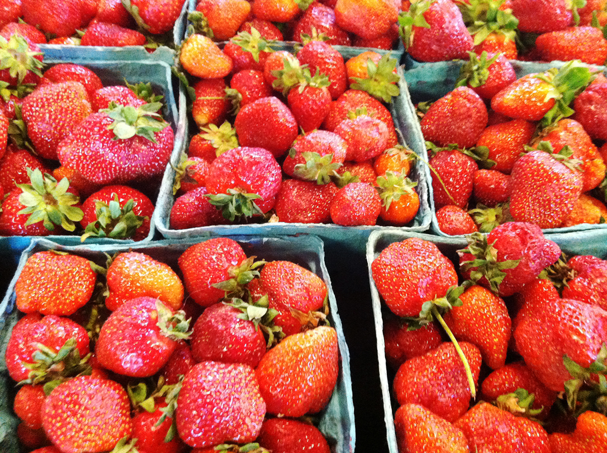 I wish we had scratch and sniff for these strawberries from Terhune Orchards - Rachel J. Weston