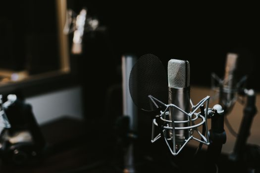 Best Voice Over Casting Director in New York | NYC — Sound and Fury