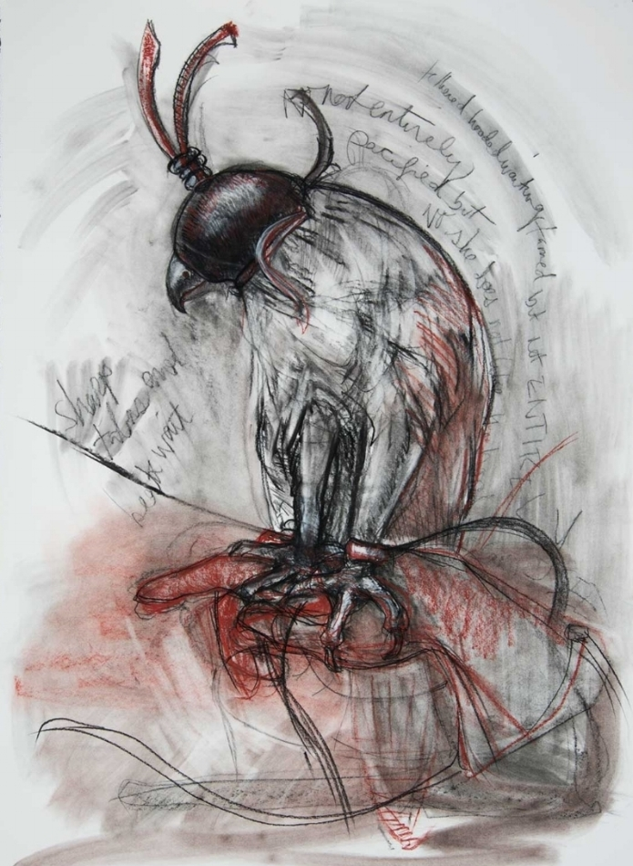 Tethered I , 2015. Charcoal, conte crayon on 100% rag paper 22 x 30 inches  Private collection