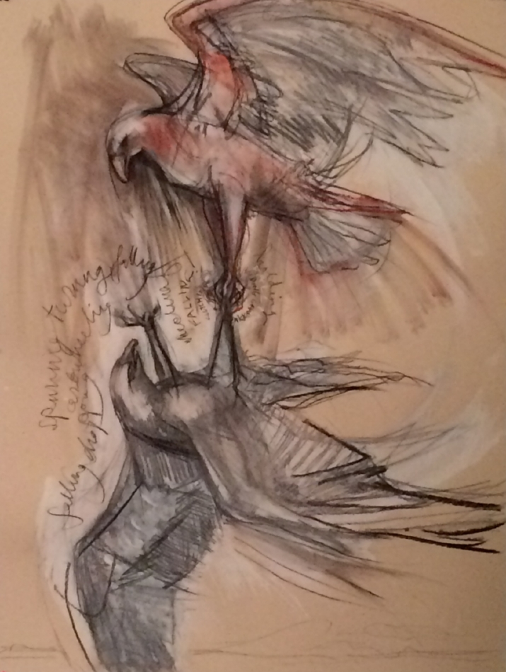 Study for Predator:Sky Dance II , 2015 charcoal, conte' crayon, gouache on Stonehenge paper 22 x 30 inches