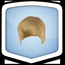 Bieber badge