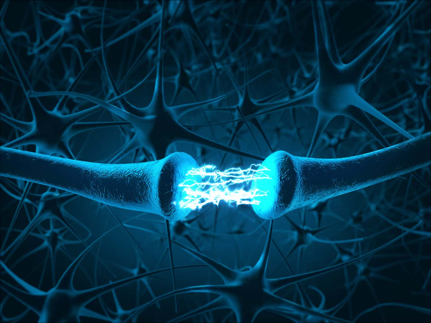 Nerve cell signalling