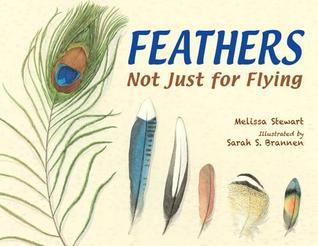feathersflying.jpg