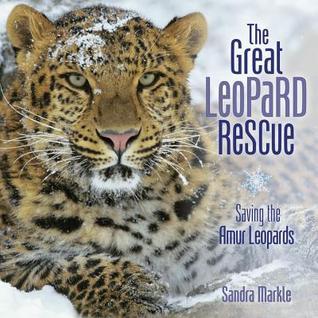 greatleopard.jpg