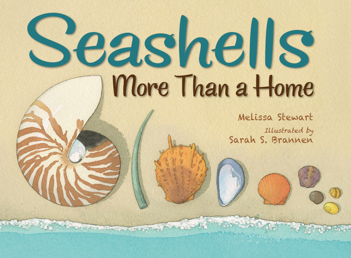 Seashells cover.png