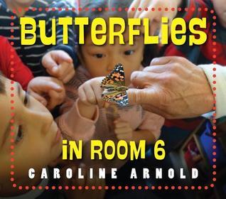 ButterfliesRoom6.jpg