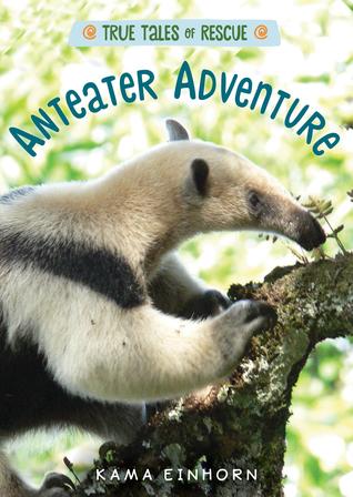 anteater.jpg