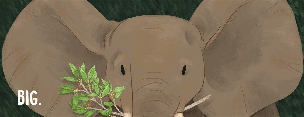 elephant1a.jpg