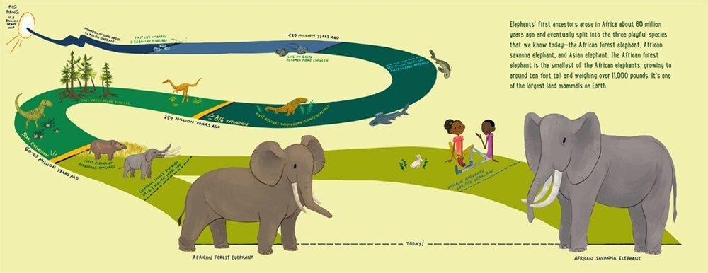 elephant2a.jpg