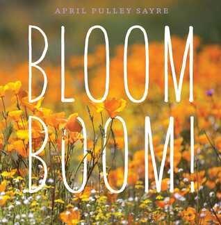 bloomboom.jpg