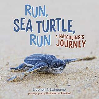 Nonfiction Picture Book Challenge: Run, Sea Turtle, Run: A Hatchling's Journey