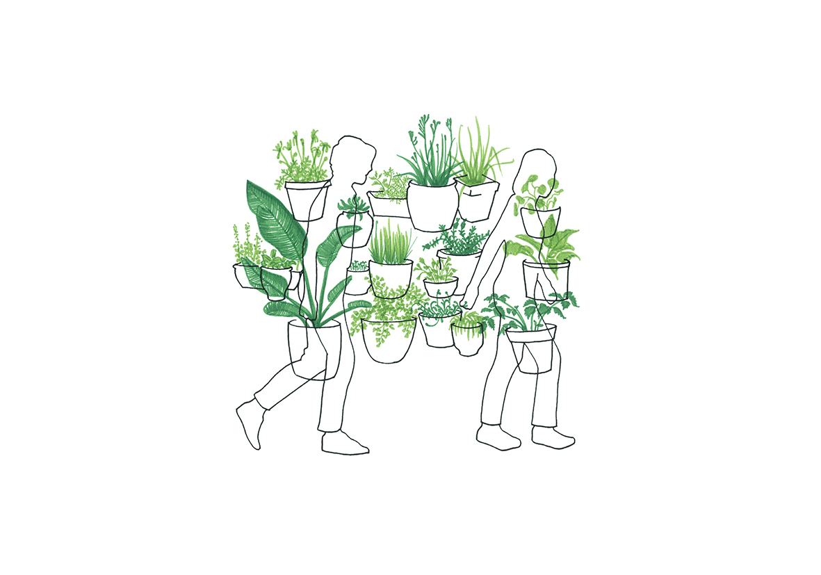 Instructions for 'Mobility Gardening' 1. 2015
