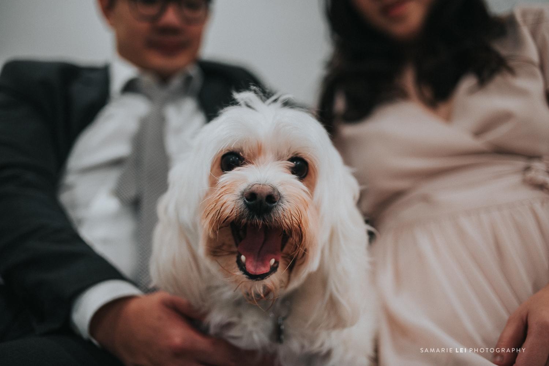Houston-wedding-engagement-photographer-Hermann-Park--57.jpg