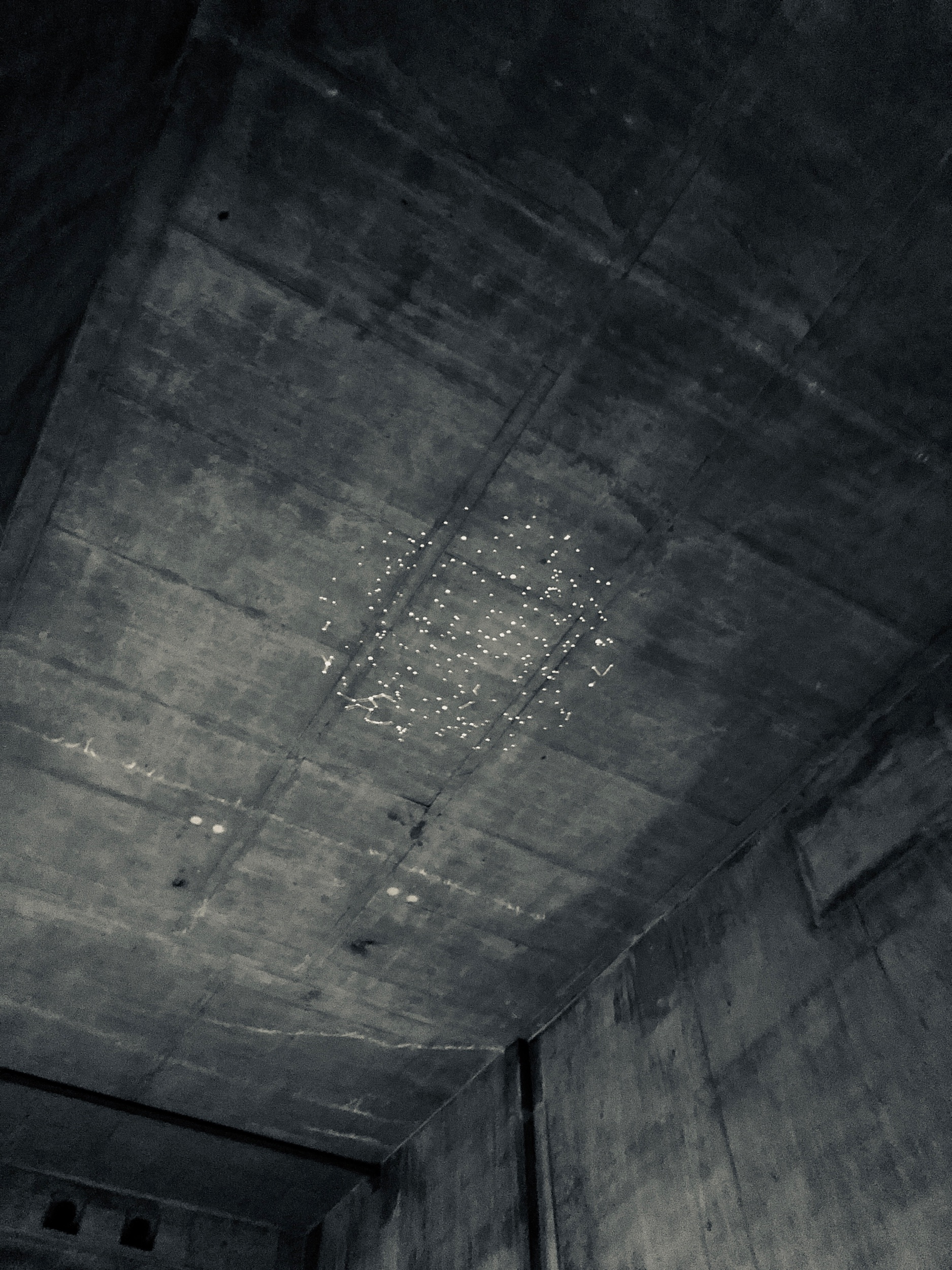 etiennedefleurieu-blackout-2.jpeg