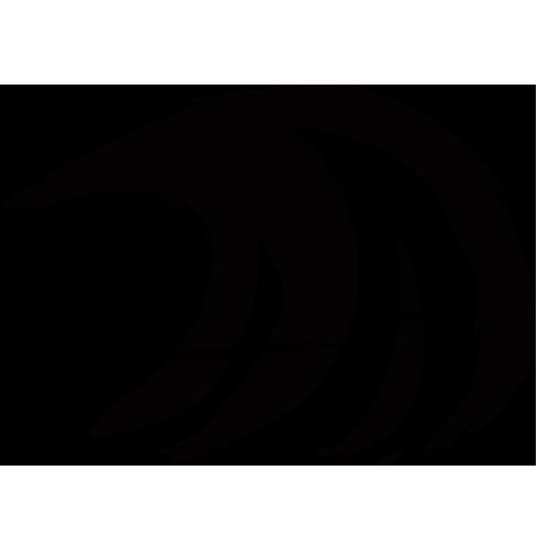 logo-surfana.png