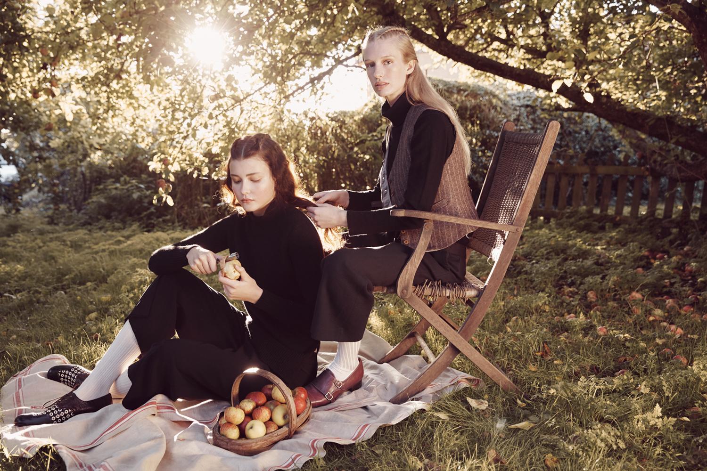 apple_harvest_8.jpg
