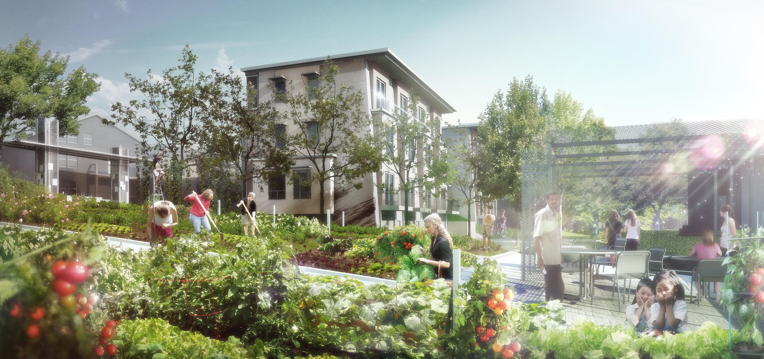 Community-Garden-View03.jpg