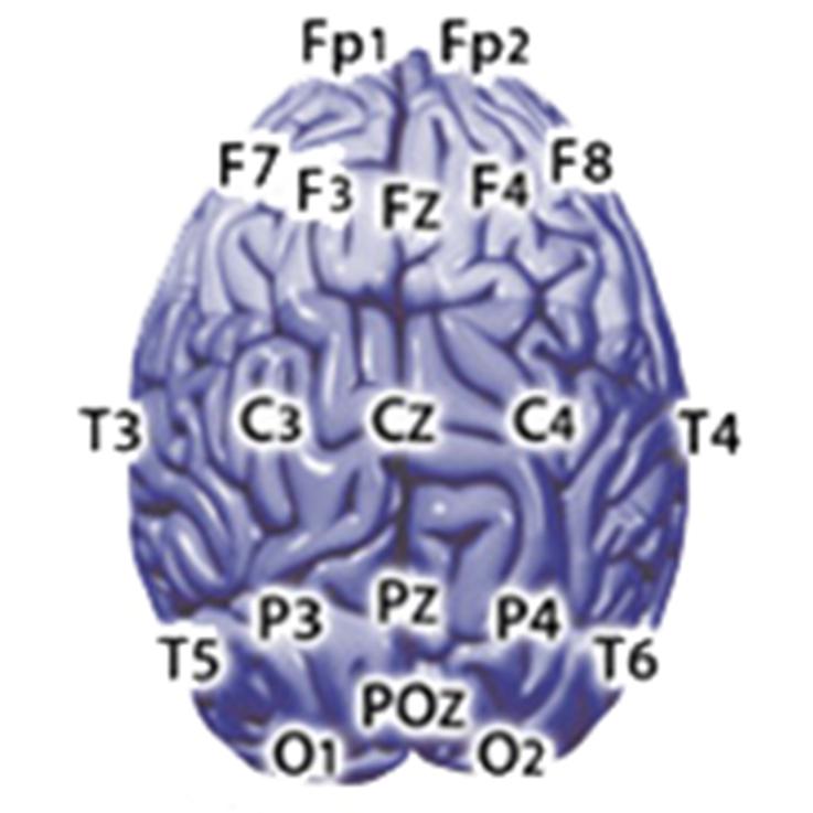 EEG_b-alert_sites24_edit.jpg