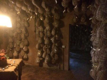 Culatello maturing in the cellars