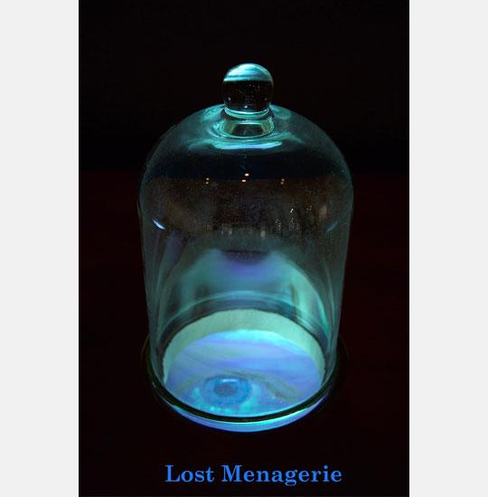 Lost Menagerie