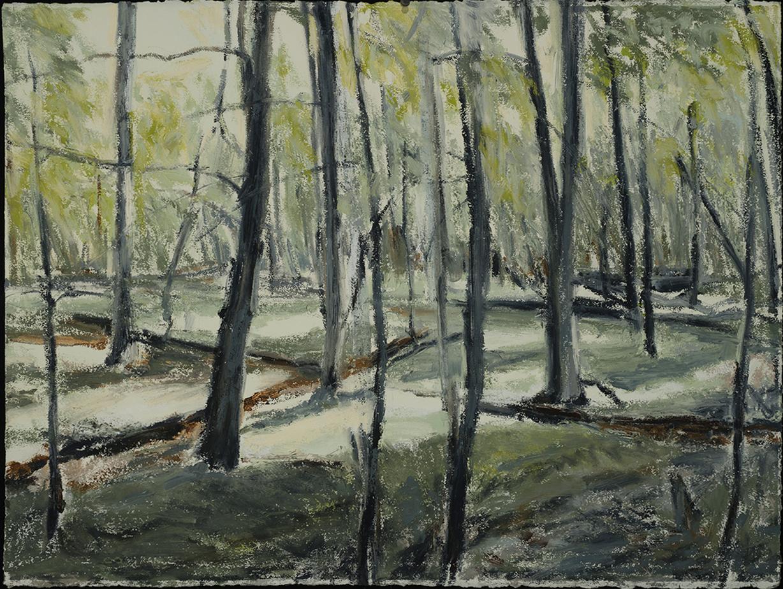 In Woods 1   2015