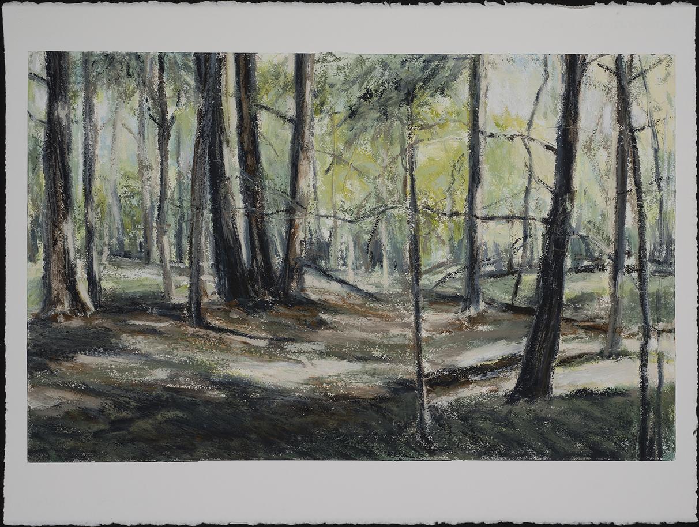 In Woods 2   2015