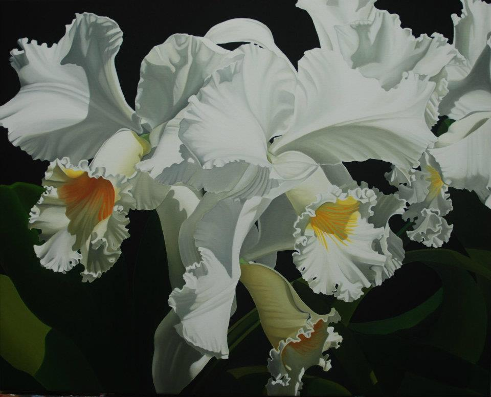 """White Cattleya Orchids"" 25""x20"" Giclee $495 Paper Print $150"