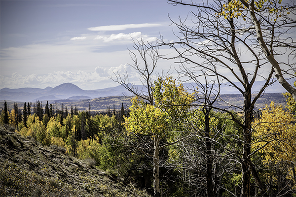 "Distant Vistas - Wyoming   Photographic Print   16""x24"" Print $365  22""x30"" Framed $500"