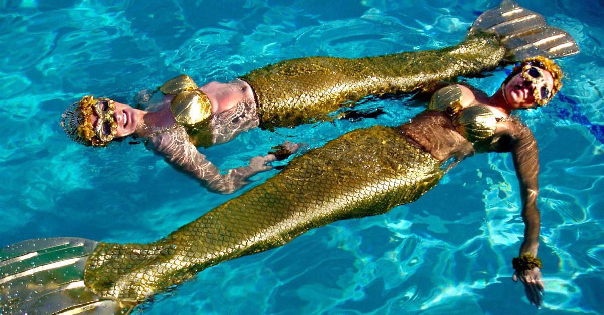Pushing Daisies:  mermaids