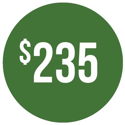Regular price $235. Discount price $199