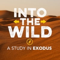 Exodus Series (2).jpeg