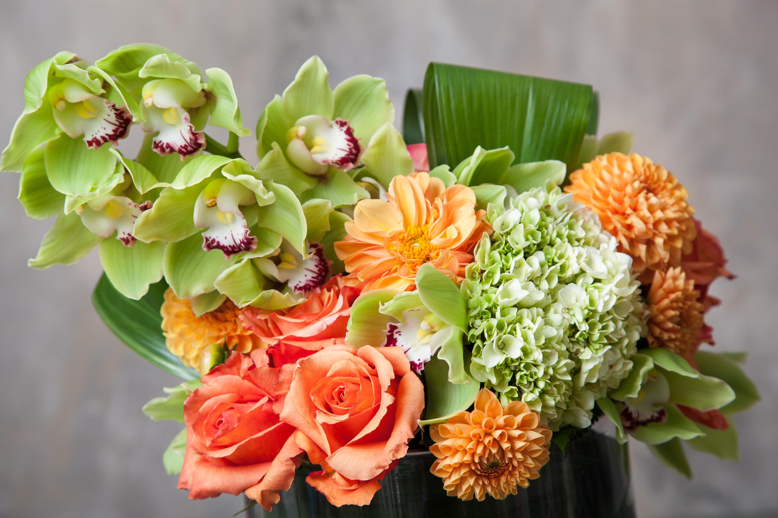 Blooms&Co--6176.jpg