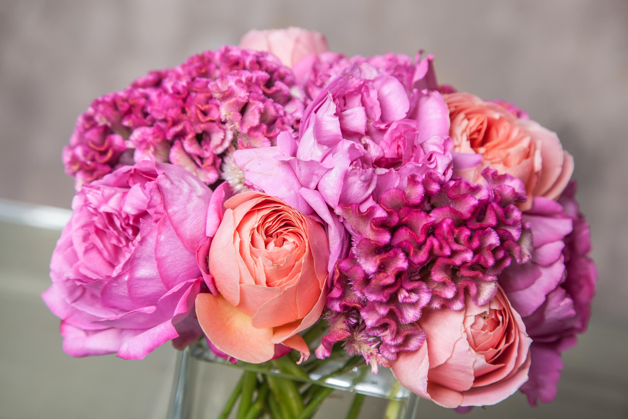 Blooms&Co--6321.jpg