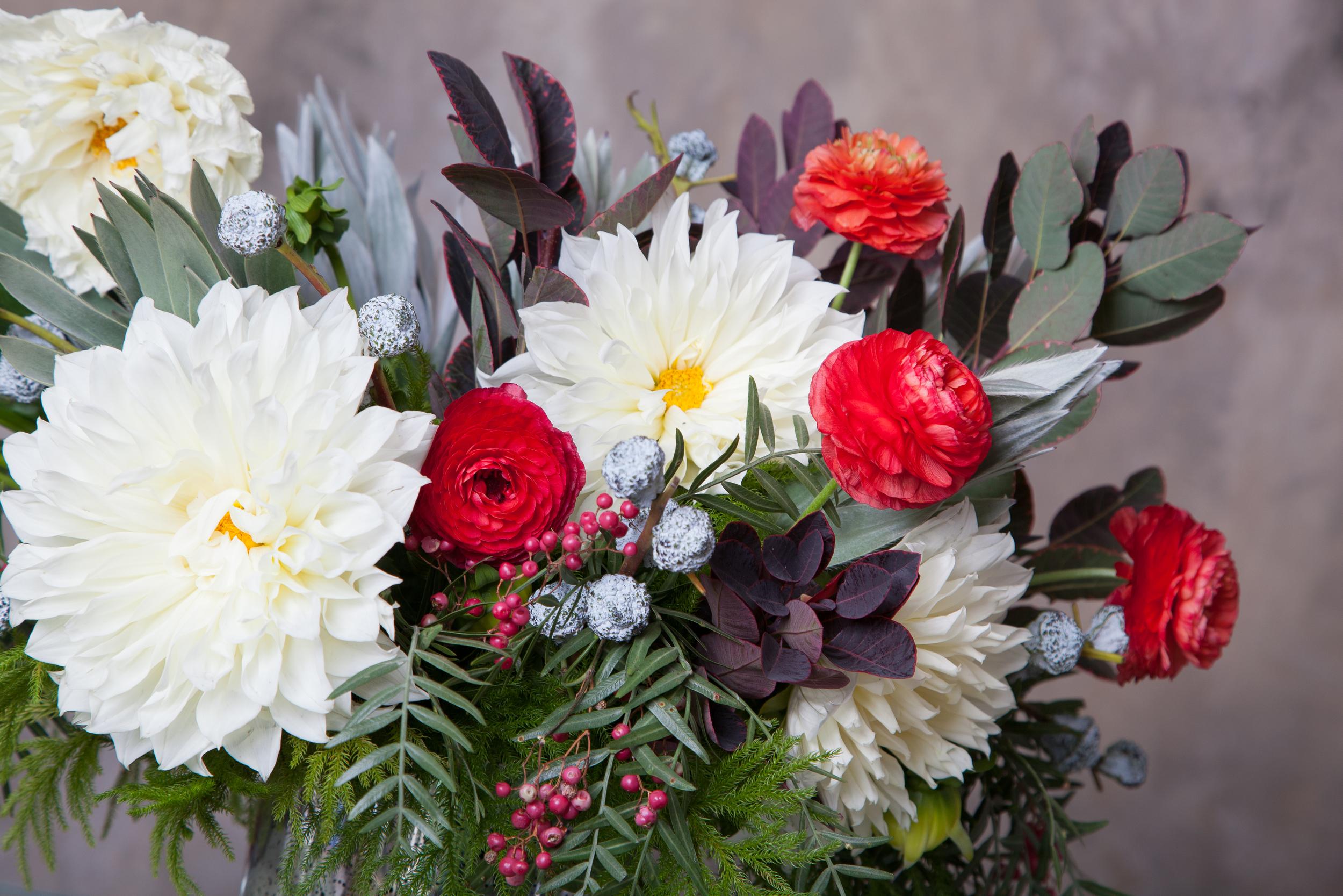 Blooms&Co--6381.jpg