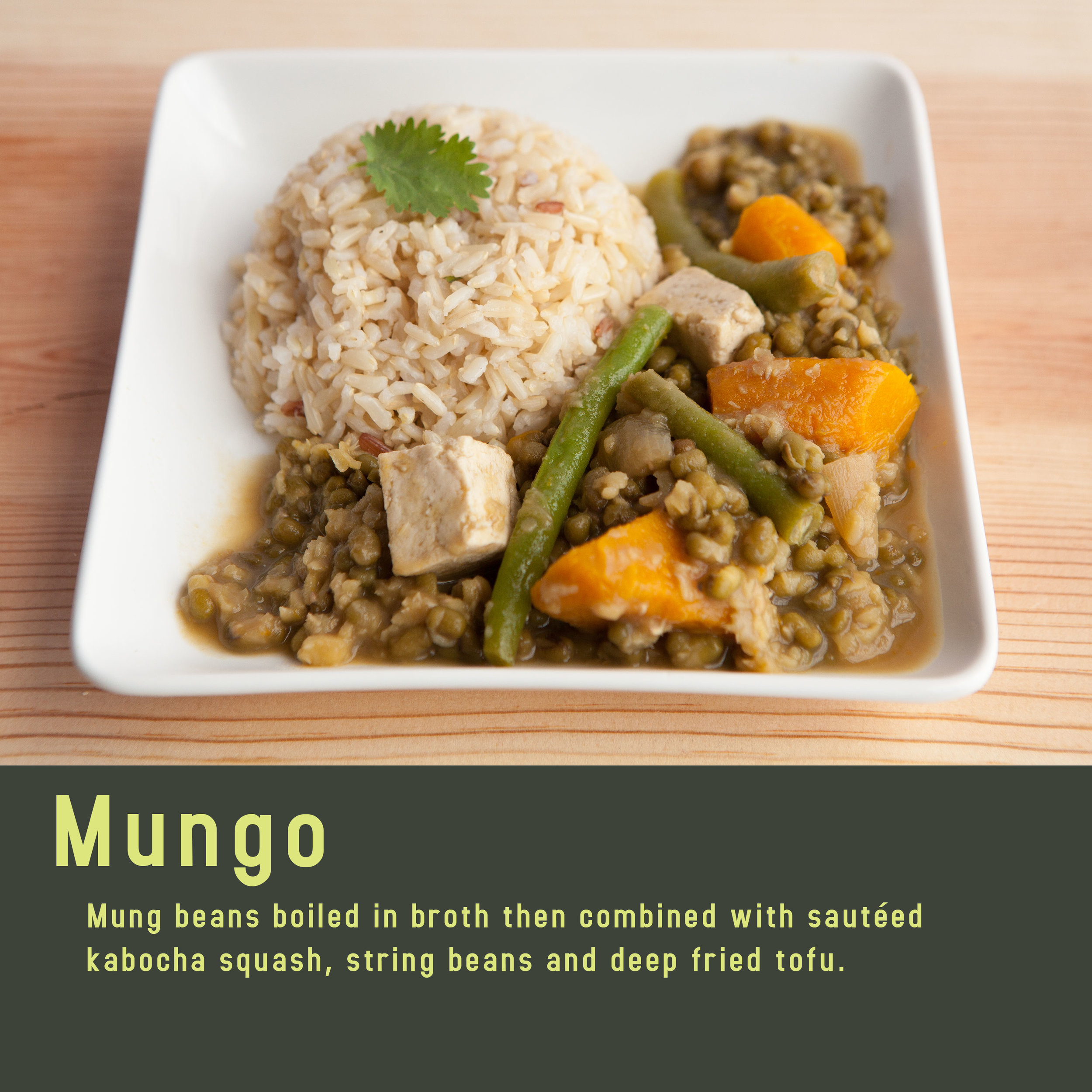 Mungo-1 (1).jpg