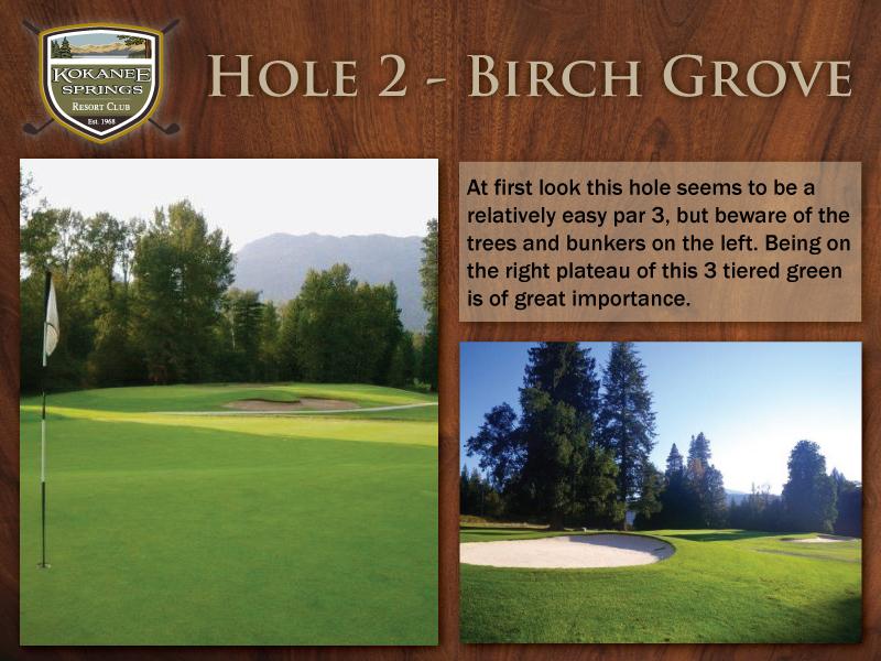 Hole-2---Birch-Grove.jpg